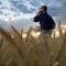 ΟΠΕΚΕΠΕ: Ανακοίνωση για την ΟΣΔΕ και τις φετινές επιδοτήσεις