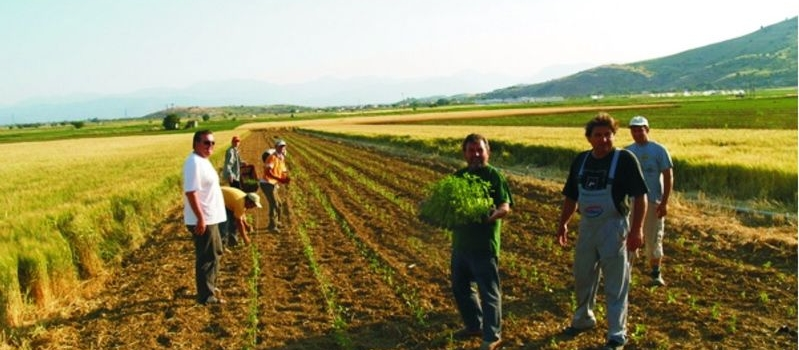 Αυξήσεις 12% στις εισφορές των αγροτών στον ΟΓΑ